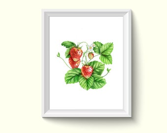 Strawberry Watercolor Drawing Painting Art Print N59