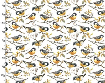 Bird Fabric, Birds on Branches Quilt Fabric, 3 Wishes Songbirds Collection 12231, Woodland Fabric, Cotton Yardage
