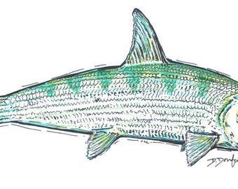 Bonefish Art