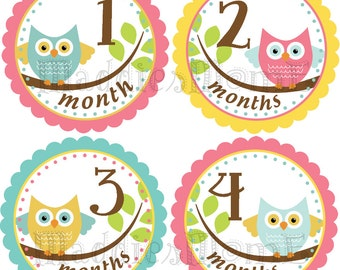 Monthly Baby Girl Stickers, Milestone Stickers, Baby Month Stickers, Monthly Bodysuit Sticker, Monthly Stickers  Owls (Esme)