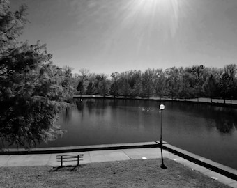 Lonely Park Bench Black White Photography Fine Art Print By Scott D Van Osdol Lightpost Water Pond Lake Reflections Trees Sidewalk Path