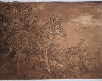 Coyotes in Moonlight original print  southwest coyote etching
