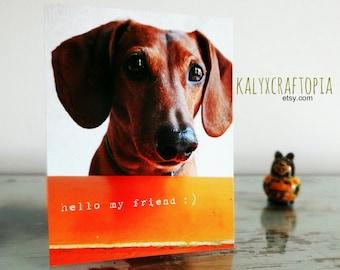 Dachshund Postcard Hello My Friend
