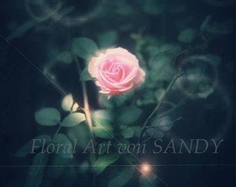 """Floral Art Image """"Celebration"""""""