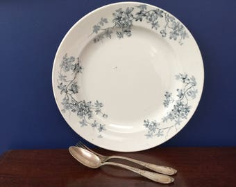 Large French antique serving platter, Digoin Sarreguemines, French transferware, French serving dish, ironstone