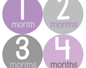 Baby Girl Month Stickers Monthly Baby Sticker Monthly Baby Stickers Baby Month Stickers Milestone Stickers Photo Stickers 157