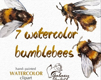 Bumble bees clipart, watercolor bumblebee, insects PNG, DIY, bumble bee art, watercolor insects, little bee