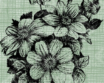 Digital Download Dahlias image Antique Flower Illustration  c. 1900, digi stamp, digis, digital stamp, Elegant, and beautiful