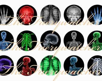 One Inch Multicolor Xray Skeleton Parts Pins, Magnets, or Flatbacks 12 ct. Set A Skeleton Parts Magnets, Skeleton Parts Pins