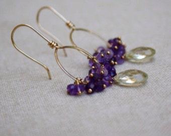 Lemon Quartz and Amethyst 14K Gold Filled Earrings - Lemon Quartz and Amethyst Cluster Hoop Earrings