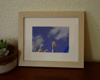 Nature Photography, Blue Sky Photography, Farm Photography, Framed Photography