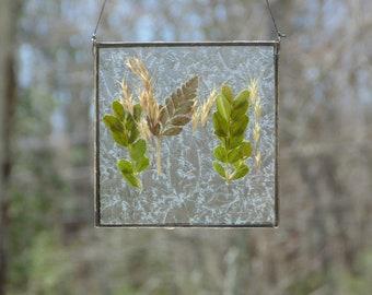 Framed pressed leaves wild flower grasses,  stained glass botanical wall art, nature inspired gift