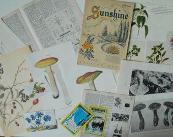 Vintage Journal Ephemera Kit, Black and White Photos, Book Pages, Vintage Illustrations, Vintage Postcards, Scrapbooking Art Supply