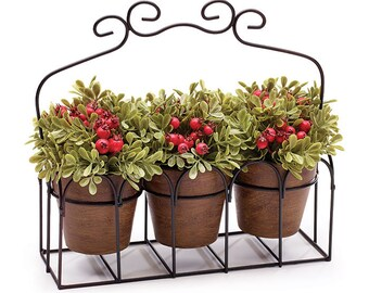 Triple Potted Plant Caddy