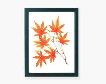 Maple Leaves, Orange Leaves, Home Décor, Wall Printable, Wall Art, Digital Download, Printable Art, Wall Decoration.