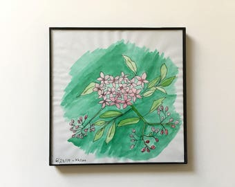 66/100: Flowers - original framed watercolor illustration