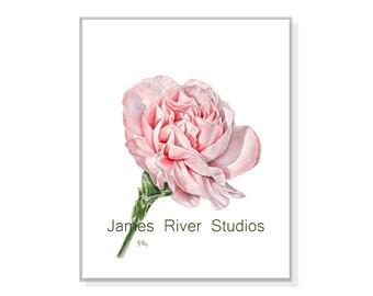 Flower Print Flower Art Pink Flower Poster Flower Shabby Chic Flower Modern Flower Art Floral Home Decor Flower Watercolor Print PinkFlower1