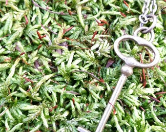 Key to my Heart Antique Bronze Skelton Key Necklace