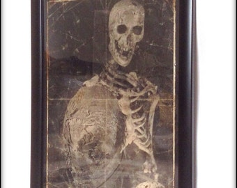 Creepy Victorian skeleton aged print in frame.