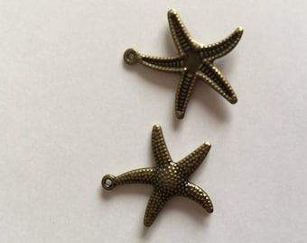 Starfish metal bronze