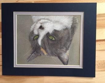 Custom Pet Portrait, Colored Pencil - Dogs, Cats, Birds, Animals