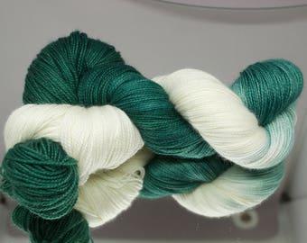 Hand dyed sock yarn - Sparty On - Fingering Superwash Merino/Nylon blend 2-ply
