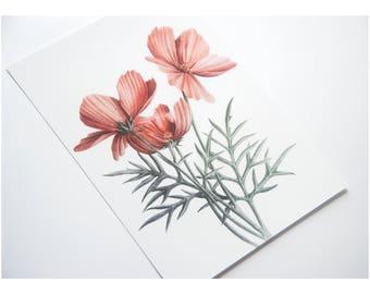 Red flower illustration, floral print, botanical art, flora bouquet pencil drawing, orange blossoms, floweret wall art, pencil giclee print