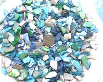 Blue  Turquoise Green Ivory Crushed Seashells Mix Vase Filler Dyed Abalone Shells Crafts Jewelry Fairy Garden Beach Decor Mosaics