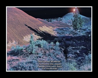 NOCTURNAL MOMENT, Painted Hills, Oregon, Sonja L. Reiter art print