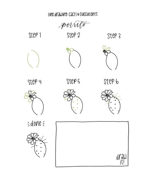 Ebook pdf download botanical line drawing cactus succulent like this item fandeluxe Image collections