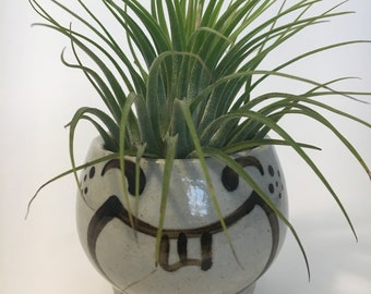 Air Plant in Face Planter