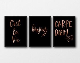 Copper Prints, set of 3 posters, French quotes, carpe diem, bonjour, cest la vie, French Poster, black & copper art, wall decor, interior