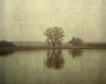 tree water reflection Canvas Gallery Wrap landscape home decor nature fine art photography