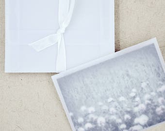 Translucent Envelopes (25) * 4 3/8 x 5 3/4 * pack of envelopes * see-through envelopes * letters * mail * crafting * packaging