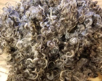 Cotswold Dark Grey Locks for Needle Felting/small doll hair/2D Wool Painting 2 oz bag