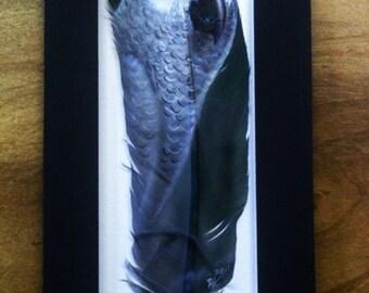 African Grey Parrot - Russ Abbott - Original Hand Painted Feather