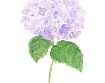 Lavender Hydrangea Art Print - Watercolor Hydrangea, Purple Hydrangea, Watercolor Flower, Botanical Art Print, Purple Flower Painting Summer