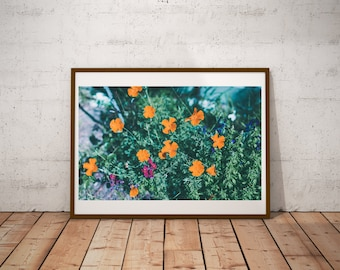 Cross Processed Flower Photography Print, Film Photography, 35mm Photography Print, Flowers Wall Art,