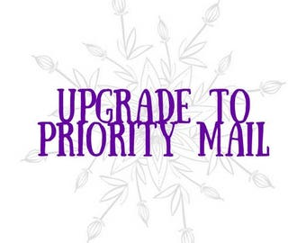US Upgrade to Priority Mail OR Priority Express Mail