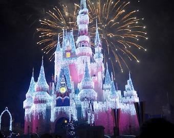 Walt Disney World; Cinderella's Castle; Photography; Frozen; Disney World; Orlando, Florida; Fireworks; Disney Castle; Photo; Princess