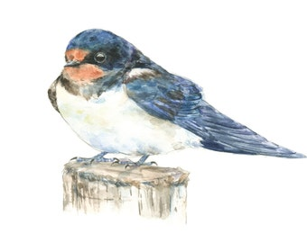 Barn Swallow watercolor painting - bird watercolor painting - 5x7 inch print - 0062