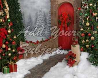 Digital Christmas Background Photo Backdrop
