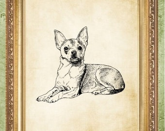 Dog Print Chihuahua Art Print Dictionary Art Prints Chihuahua Wall Art
