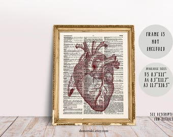Red Heart Anatomy Print, Human Anatomy, Medical Student Gift, Anatomical Heart, Science Poster, Gift for Doctors