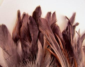 Dark grey Feathers blue dun over eggshell 30 pack