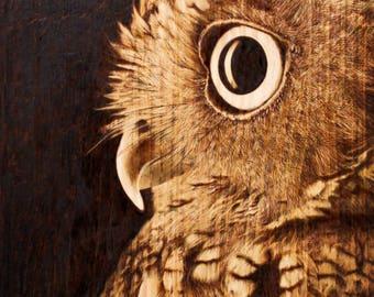 owi portrait pyrography. woodburning art