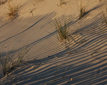 Beach Scene, Sand Dune, Beach Grass, Beach Fence, Beach Preservation, Shadows, Beige, Brown, Nature Photography, Patterns, Abstract Images