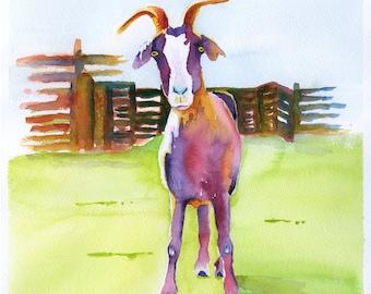 goat, watercolor,  animal art,  goat painting, goat art, kitchen art, animal art, goat print,  kitchen art, watercolor animal,