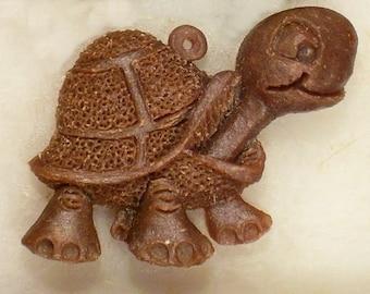 Turtle Teddy