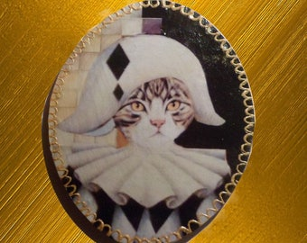little cat dressed in Harlequin picture